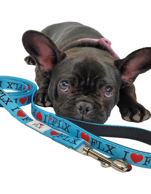 I Heart FLX Dog Leash